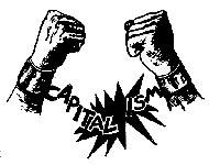 anticapitalist2